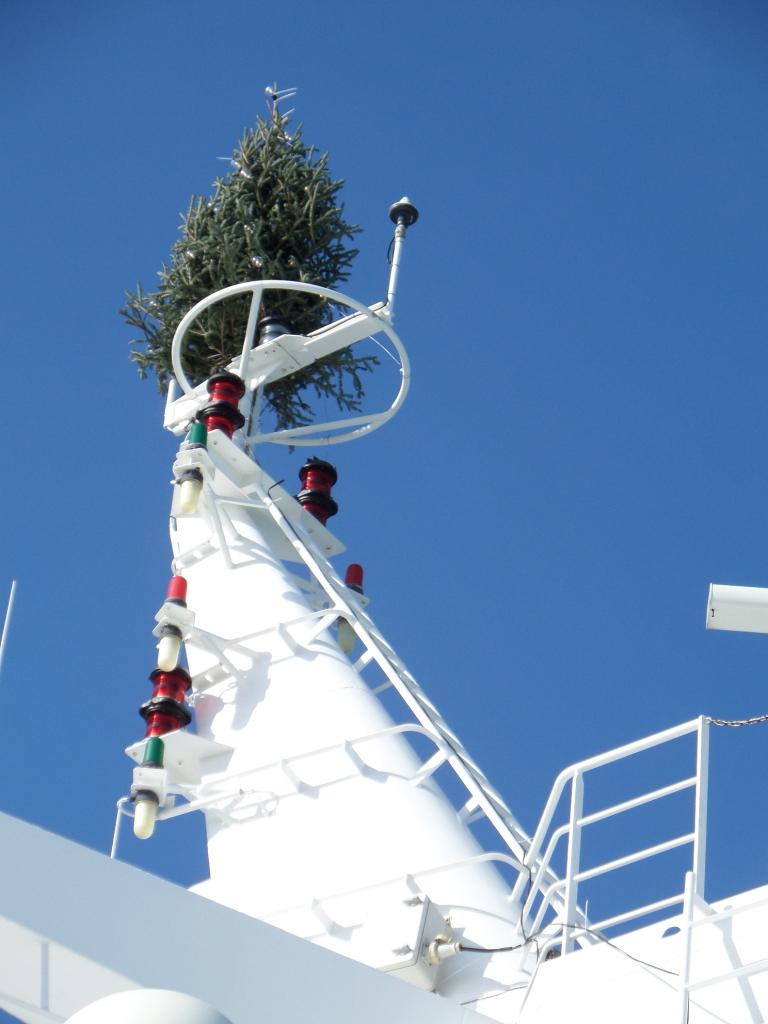"""Unser Weihnachtsbaum am """"Mast"""""""