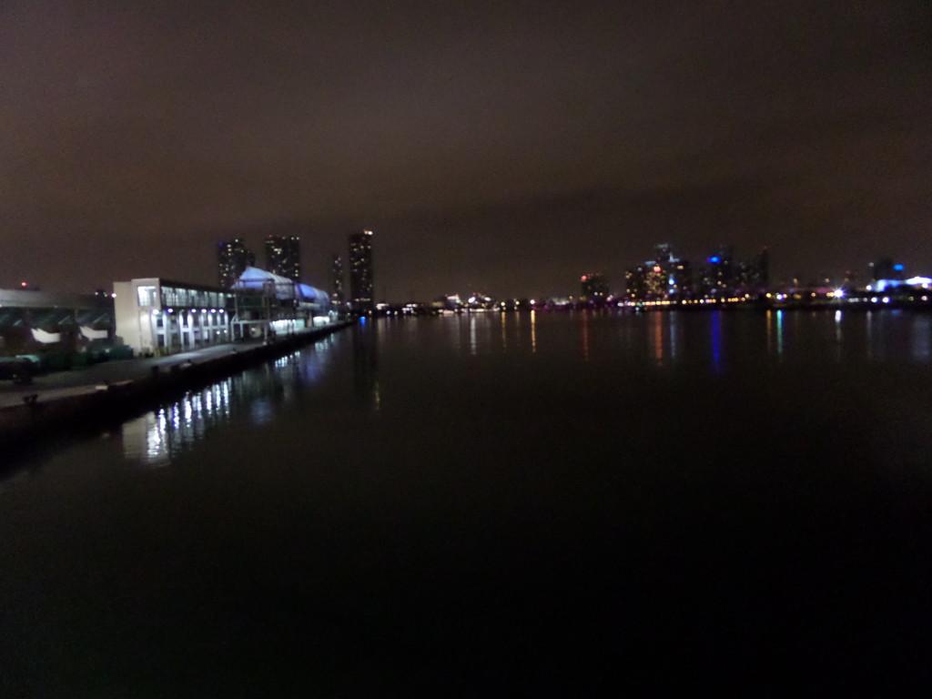 Port ob Miami by night